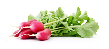 Fresh red radish. Fresh red radish on white background Stock Photo