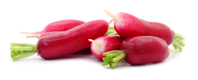 Fresh red radish. Fresh red radish on white background Royalty Free Stock Photos