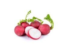 Fresh red radish  on white background. Fresh red radish  on a  white background Royalty Free Stock Photo