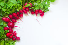 Fresh red radish on white background. Fresh red radish from garden on white background Stock Photo