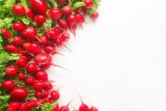 Fresh red radish on white background. Fresh red radish from garden on white background Royalty Free Stock Photo
