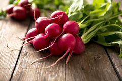 Fresh red radish on wooden table. Close up Royalty Free Stock Image