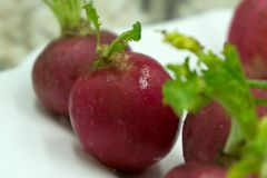 Fresh red radish on wooden table, closeup . Fresh red radish on wooden table, closeup Royalty Free Stock Image