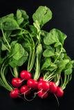 Fresh red radishes. On black background Stock Images