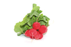 Fresh red radishes with green leaves. On a white background Royalty Free Stock Images