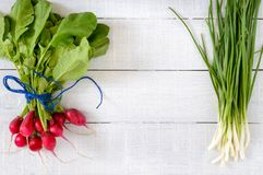 Fresh red radishes and green young onions on white wooden background. Healthy diet with radish. Ingredients for a light spring vegetable salad. Free space for Royalty Free Stock Photo