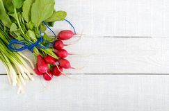 Fresh red radishes and green young onions on white wooden background. Healthy diet with radish. Ingredients for a light spring vegetable salad. Free space for Stock Photos