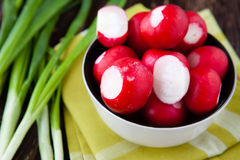 Fresh red radishes and onions in a bowl. Closeup Stock Images