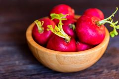 Fresh red radishes in wooden bowl close. Close up fresh bright red redishes in wooden bowl on dark wooden surface. Healthy diet concept, selective focus Stock Images