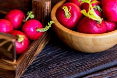 Fresh red radishes in wooden box close. Close up fresh bright red redishes in wooden box and bowl on dark wooden surface. Healthy diet concept, selective focus Royalty Free Stock Photos