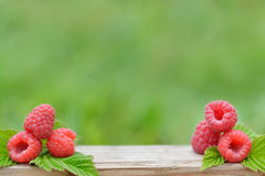 Fresh red raspberries on  blurred natural background Stock Photography