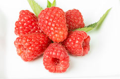 Fresh red raspberries and mint on white Royalty Free Stock Photos