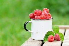 Fresh red raspberries in mug on wooden background. Fresh red raspberries in mug on wooden table on  blurred natural background Stock Photo