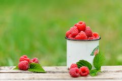 Fresh red raspberries in mug on wooden background. Fresh red raspberries in mug on wooden table on  blurred natural background Royalty Free Stock Image