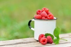 Fresh red raspberries in mug on wooden background. Fresh red raspberries in mug on wooden table on  blurred natural background Royalty Free Stock Photos