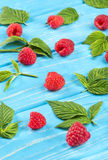 Fresh red raspberries. Scattered fresh red raspberries with leaves on a blue table Royalty Free Stock Image