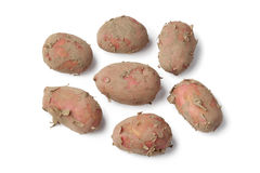 Fresh red Raya potatoes Royalty Free Stock Images