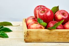 Fresh red ripe apples fruits in the wooden box. On light rustic background. Space for text. Copy space. Pattern with apples stock photos
