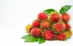 Fresh red ripe rambutan Nephelium lappaceum with leaves. Isolated on white background. Thai dessert sweet fruits Royalty Free Stock Images