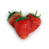 Fresh red ripe strawberries isolated Stock Photography