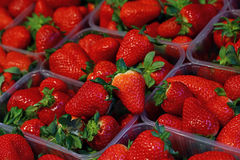 Fresh red ripe strawberries in plastic boxes stock photo