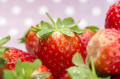 Fresh red ripe strawberries on a plate. Pink dotted background. Royalty Free Stock Photo