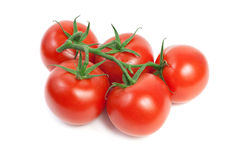 Fresh red ripe tomatoes Royalty Free Stock Photo