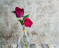 Fresh red rose in glass bottle on wooden background Royalty Free Stock Images