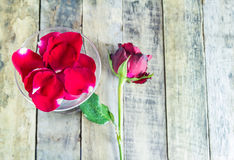Fresh red rose in glass on wooden background Stock Image