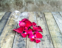 Fresh red rose in glass on wooden background Royalty Free Stock Images