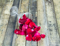 Fresh red rose in glass on wooden background Royalty Free Stock Image