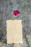 Fresh red rose and old paper on wooden background Royalty Free Stock Photo