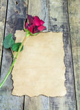 Fresh red rose and old paper on wooden background Royalty Free Stock Images