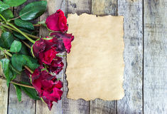 Fresh red rose and old paper on a wooden background. Stock Image