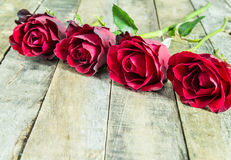 Fresh red rose on wooden background Royalty Free Stock Image