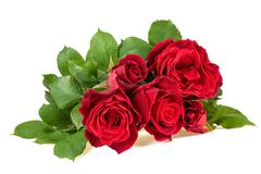 Fresh red roses bouquet isolated on white backgroumd stock photo
