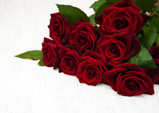 Fresh Red roses Royalty Free Stock Photos