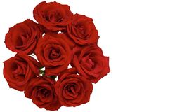 Fresh bloom love shape of red roses. stock photo