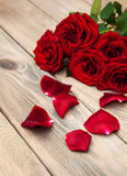 Fresh Red roses Royalty Free Stock Photography