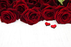 Fresh Red roses Stock Photography