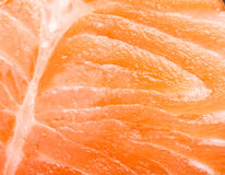 Fresh red salmon texture. Royalty Free Stock Photos