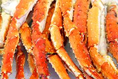 Fresh red sea crab claws stock photos