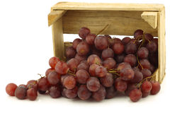 Fresh red seedless grapes on the vine. In a wooden crate on a white background Stock Images