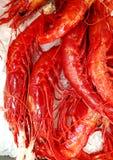 Fresh red shrimp at market stock image