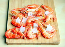 Fresh red shrimps with ice Stock Image