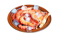 Fresh red shrimps with ice Stock Photos