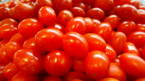 Fresh red small tomatos Royalty Free Stock Photography