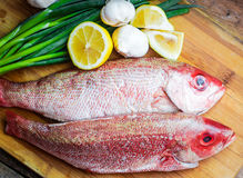 Fresh red snapper preparation with lemon and vegetables Royalty Free Stock Photo