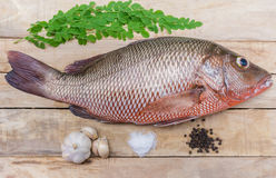 Fresh red snapper. Preparation with spices and herbs on wooden table Stock Photo