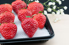 Fresh red strawberries. Some fresh red strawberries and some white flowers Stock Image